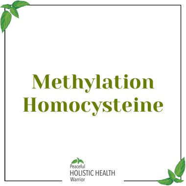 methylation