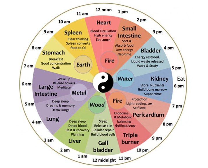 chinese-body-clock (1)